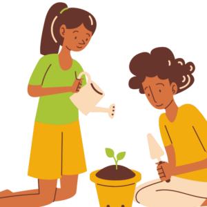Cuento africano - La planta egoista - Guinea Ecuatorial